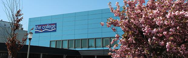 Spring at the North Road campus